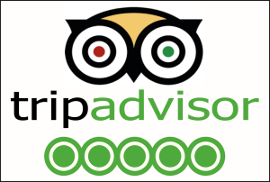 LifeCycle Adventure on Trip Advisor