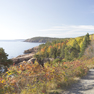 Bike tours destination Maine