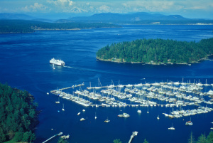 friday harbor from the air